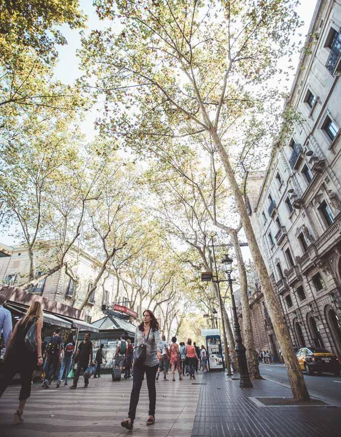 Urbaning usos y morfolog a de las plantas bajas de la - Plantas bajas en barcelona ...