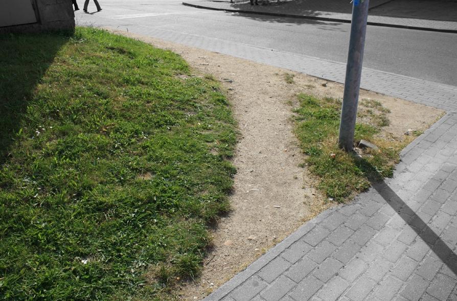 Desire Path /Font: Ismael Teira)